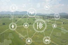 Internet di agricoltura industriale di cose, concetti d'agricoltura astuti Immagine Stock