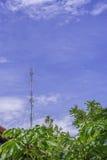 Internet do polo do sinal Fotos de Stock