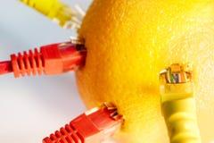 Internet-Kabel sind in der orange Frucht fest Verbindung zum Internet durch eine Frucht Lizenzfreie Stockfotos
