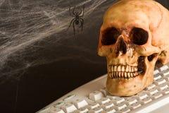 Internet lent Photographie stock libre de droits