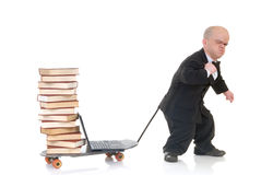 Internet library dwarf surfing Stock Photography