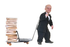 Internet library dwarf surfing Royalty Free Stock Image
