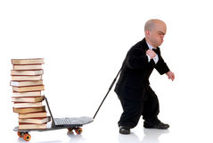 Internet library dwarf surfing Royalty Free Stock Photo