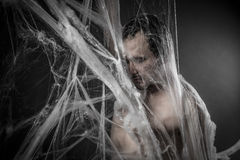 Internet.man czochrający w ogromnej białej pająk sieci Fotografia Royalty Free