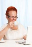 Internet que hojea durante el desayuno Imagen de archivo libre de regalías