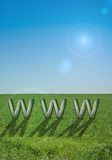 Internet symbol www. On green field stock images