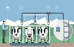 Internet of things on dairy farm. Herd management and automatic milking. Vector illustration Stock Image