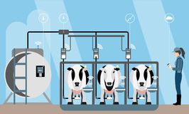 Internet of things on dairy farm. Herd management and automatic milking. Vector illustration Royalty Free Stock Photo