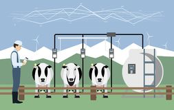 Internet of things on dairy farm. Herd management and automatic milking. Vector illustration Stock Photos