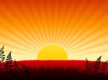 Internet van de zonsondergang achtergrond Stock Afbeeldingen