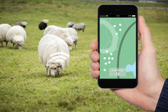 Internet von Sachen im Ackerbau Stockfotos