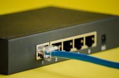 Internetkabel och router, i livliga färger Arkivfoton
