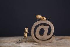 Internetowi arachidy Zdjęcie Stock