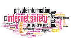 Internetowy bezpieczeństwo Obrazy Stock