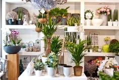 Interno del negozio di fiore Immagini Stock Libere da Diritti