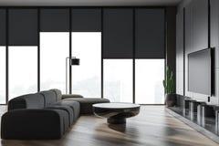 Interno del salone con il sofà e la TV grigi illustrazione di stock