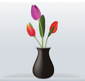 Interno del tulipano del vaso Fotografia Stock