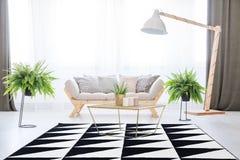 Interno della stanza di giorno con le piante Fotografie Stock Libere da Diritti