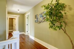 Interno di corridoio con le pareti verdi Immagini Stock