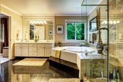 Interno di lusso del bagno Fotografia Stock