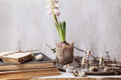 Interno di Pasqua con il fiore ed i vecchi libri Fotografie Stock Libere da Diritti