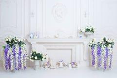Interno luminoso pulito di lusso con il camino bianco Fotografie Stock Libere da Diritti
