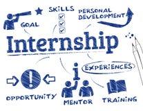 internship Imagenes de archivo