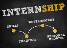 internship Fotografia Stock