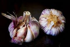 Intero aglio bianco Immagini Stock