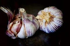 Intero aglio bianco e porpora Fotografia Stock Libera da Diritti