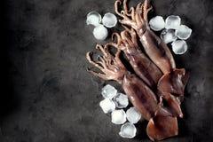 Intero calamaro crudo fresco su un fondo scuro del granito Vista superiore Copi lo spazio Fotografia Stock Libera da Diritti