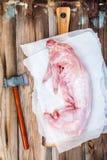 Intero coniglio crudo su carta con l'ascia Fotografie Stock Libere da Diritti