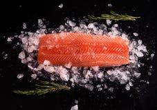 Intero filetto di pesce rosso crudo con i ramoscelli dei rosmarini su un fondo nero su ghiaccio scheggiato Ingredienti per una di fotografie stock libere da diritti