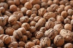 Intero fondo dei wallnuts Immagine Stock