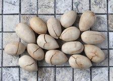Intero Fried Pecan Nuts con Shell incrinato Fotografie Stock