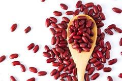 Intero grano del fagiolo rosso sul cucchiaio di legno Vista superiore Fotografia Stock Libera da Diritti