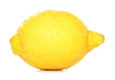 Intero limone Fotografie Stock