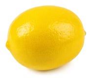 Intero limone isolato Fotografia Stock
