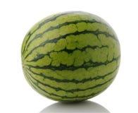 Intero Mini Seedless Watermelon Immagine Stock Libera da Diritti