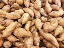 Intero mucchio della patata dolce Fotografia Stock Libera da Diritti