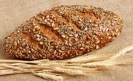 Intero pane del granulo di Seeduction Fotografia Stock