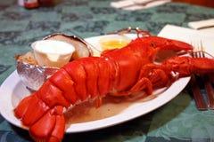 Intero piatto dell'aragosta della Maine Fotografia Stock