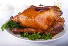 Intero pollo arrostito dell'erba fotografie stock