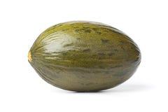 Intero singolo melone di Piel de sapo fotografie stock