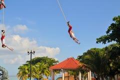 Interprètes d'acrobate de Voladores aux hommes de vol Images stock