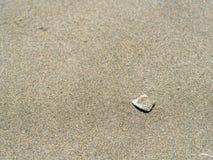 Interpréteur de commandes interactif dans le sable Image stock