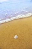Interpréteur de commandes interactif de mer sur la plage sablonneuse Photos libres de droits