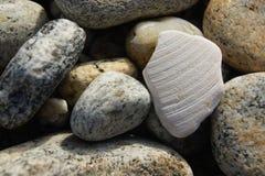 Interpréteur de commandes interactif doux parmi des pierres de mer Photos stock