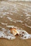 Interpréteur de commandes interactif sur le beach1 Images stock