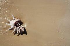 Interpréteur de commandes interactif sur le sable. Photo stock